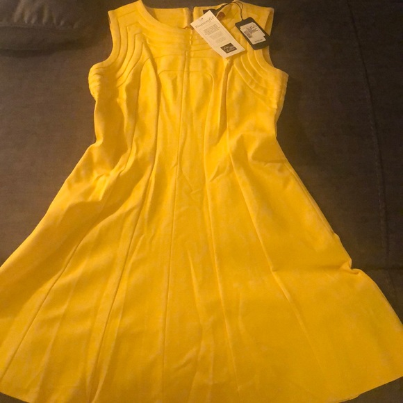 Ted Baker London Dresses & Skirts - Ted Baker size 2 Mid yellow detail dress.